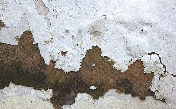 penetrating damp peeling paint work on exterior walls can be a symptom. Black Bedroom Furniture Sets. Home Design Ideas