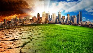 Effects of ClimateChange